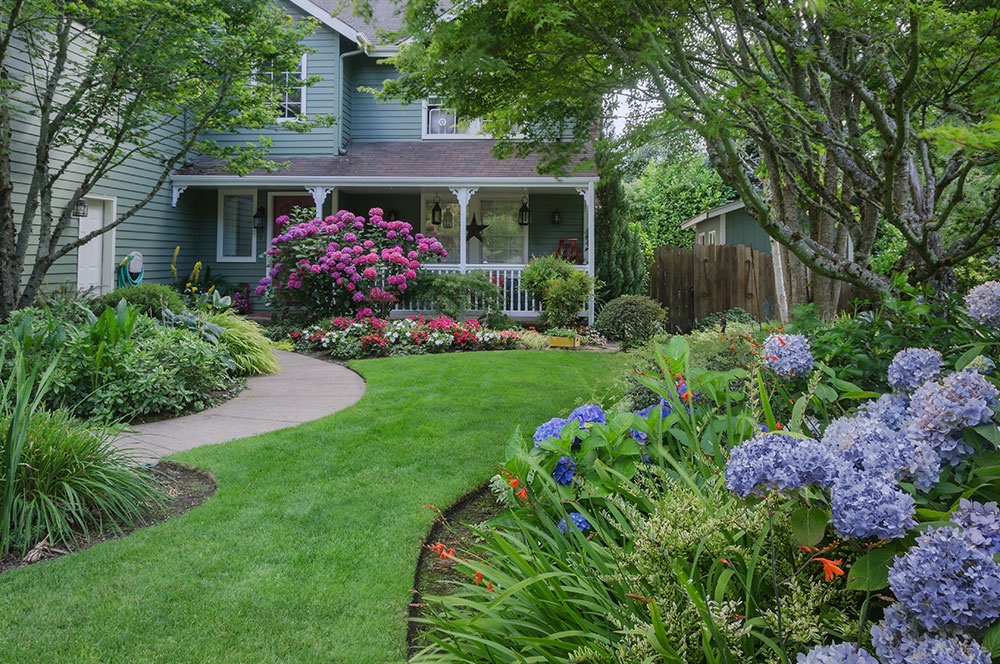 10 Curb Appeal Fixes to do in One Day