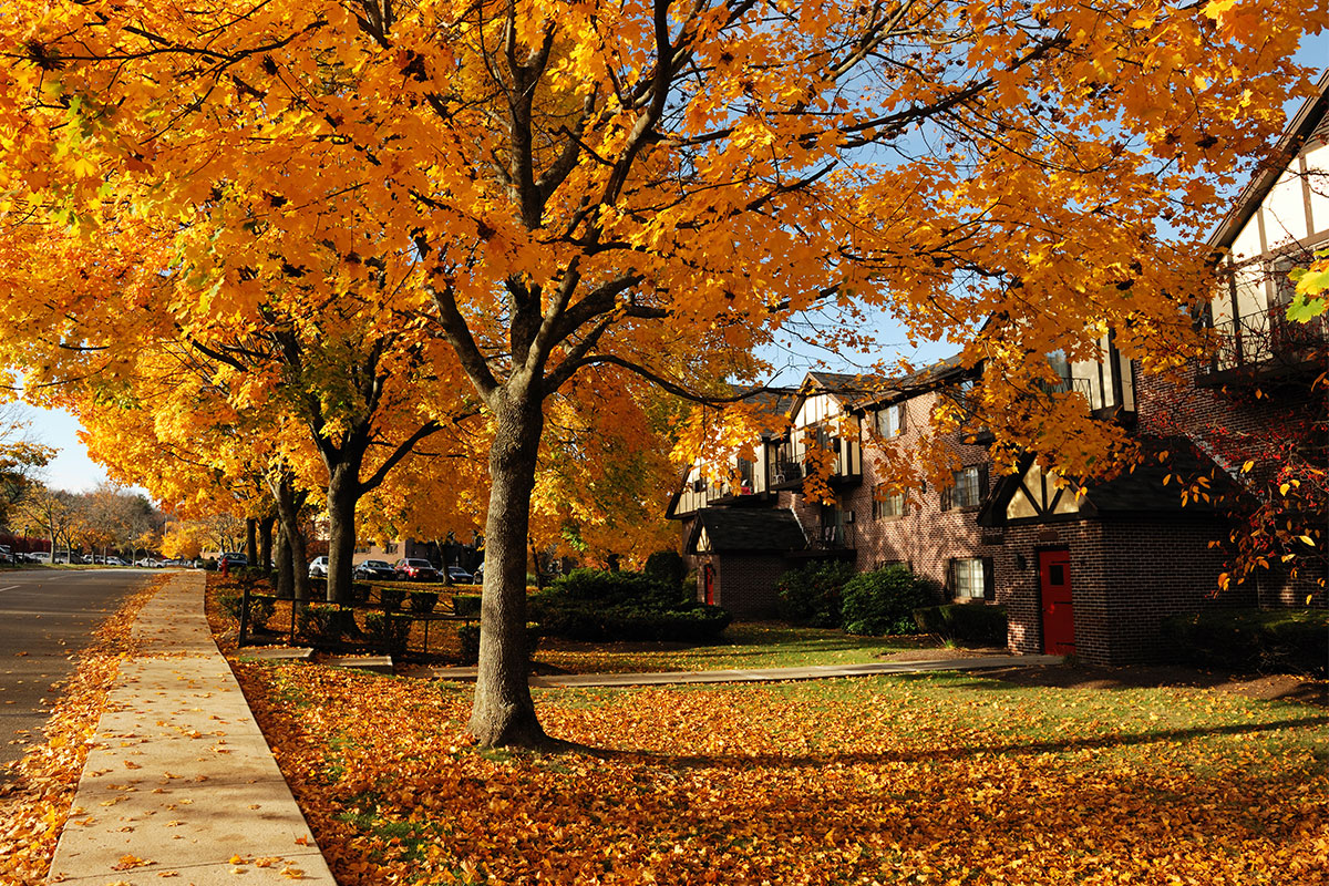 4-reasons-to-purchase-a-home-in-fall