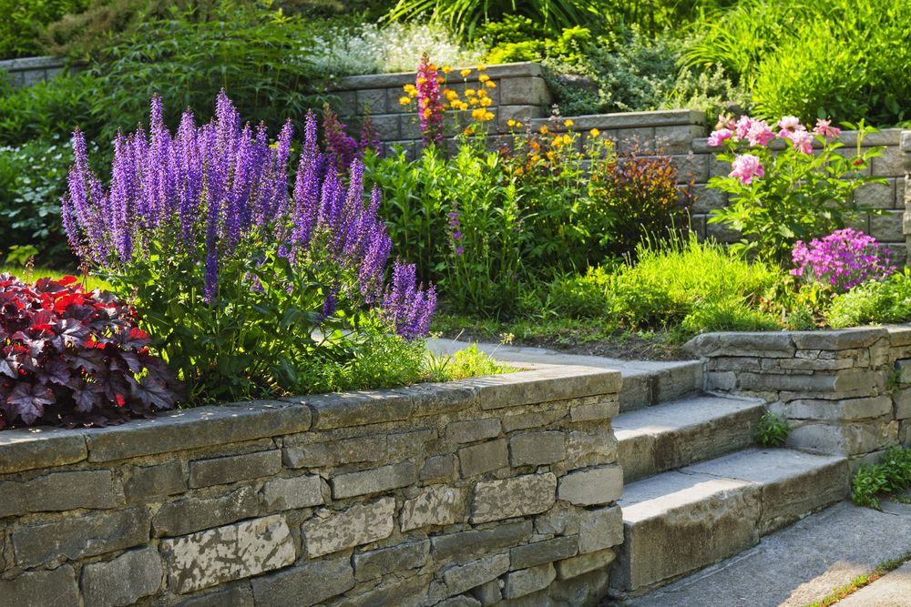 A paved path in a garden.