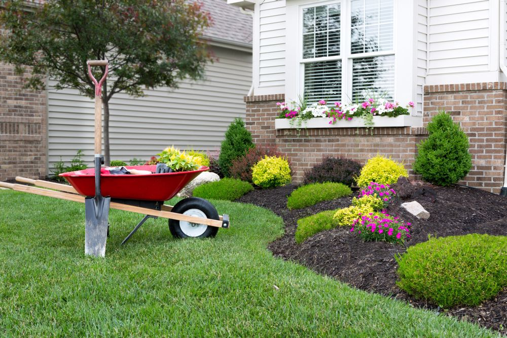 Plants & Trees that Will Enhance your Home's Curbside Appeal